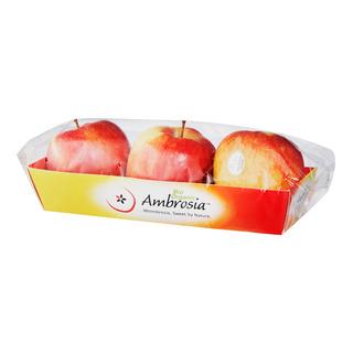 Italy Bio Organic Ambrosia Apple