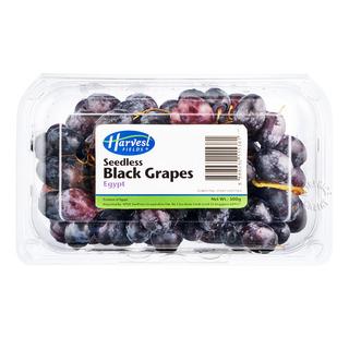 Harvest Fields Seedless Grapes - Black