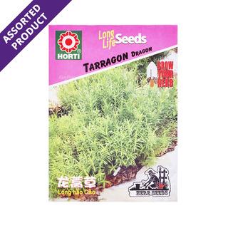 Horti Long Life Seeds - Tarragon Russian