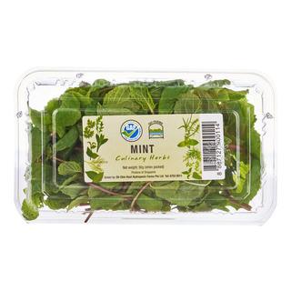 Oh Farms Fresh Mint