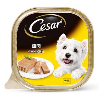 Cesar Dog Wet Food - Chicken