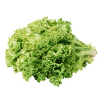 Pasar Local Lettuce