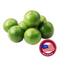 Pasar Large Lime