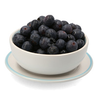 AgroBerries Premium Blueberry