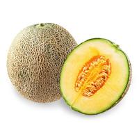 Australian Rock Melon