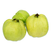 Pasar Malaysia Seedless Guava