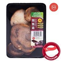 P&L Fresh Mushroom - Abalone