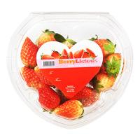 BerryLicious Korea Strawberry