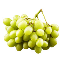 Sunview Organic California Green Seedless Table Grapes