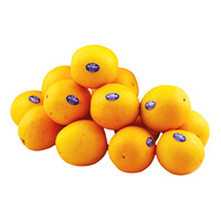 Outspan South Africa Oranges