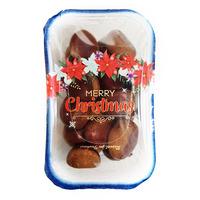 Korea Chestnut