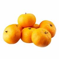 China Namfung Tangerine