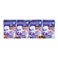 Dutch Mill UHT Drinking Yoghurt - Blueberry