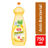 UIC Big Value Natural Dishwashing Liquid - Anti-Bacterial
