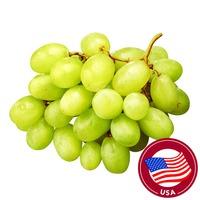 Premium USA Green Seedless Grapes
