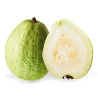 Taiwan Guava