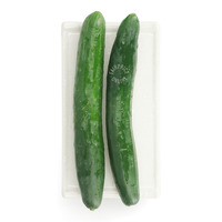Givvo Japanese Cucumber