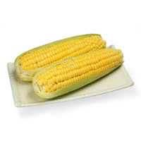 Pasar Thailand Corn of Cob