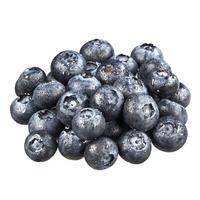 Hurst's Berryfarm USA Blueberries
