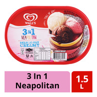 Wall's Ice Cream Tub - 3 In 1 Neapolitian