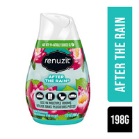 Renuzit Gel Air Freshener - After The Rain