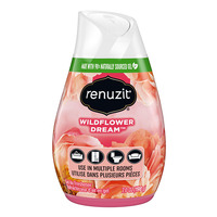 Renuzit Gel Air Freshener - Wildflower Dream