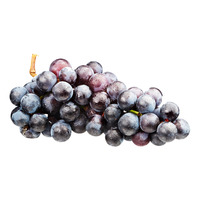 Berry Licious Campbell's Early Grapes (Hwaseong Grapes)