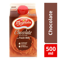 F&N Magnolia Fresh Milk - Chocolate