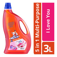 Mr Muscle 5 in 1 Multi-Purpose Cleaner - I Love You