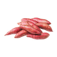 Vietnam Prepacked Sweet Potato - Purple