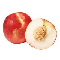 Pasar USA White Nectarine