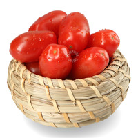 Blush Sweet Delights Premium Snacking Tomatoes