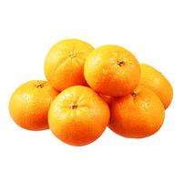 Gold Spain Mandarin