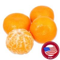 USA Halos Mandarin