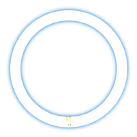 PowerPac Circular Fluorescent Lamp - Extra Bright (32 W)