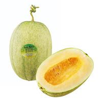 China Hami Melon