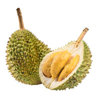 Durian D13 - Dehusked (Vacuum Packed)