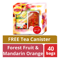 Lipton Pyramid Tea Christmas Festive Gift Pack with Canister (Red)