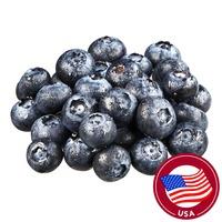 Oregon Berry USA Blueberry