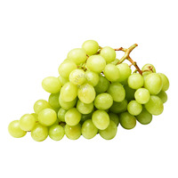 Harvest Fields Australia Grapes - Green