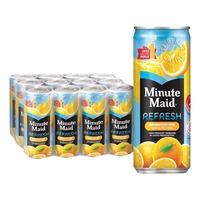 Minute Maid Refresh Fruit Can Drink - Orange