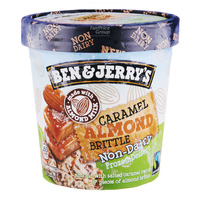 Ben & Jerry's Non-Dairy Ice Cream - Caramel Almond Brittle