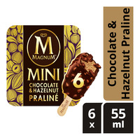 Magnum Mini Ice Cream - Chocolate & Hazelnut Praline