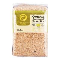Kamchan Organic Germinated Rice - Brown