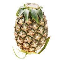 Thailand Mini Pineapple - Phulae