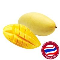 Thailand Honey Mango