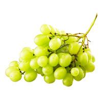 Harvest Fields Seedless Egypt Grapes - Green
