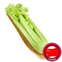 Freshco China Fresh Celery