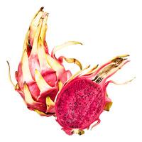 Cambodia Pink Dragon Fruit