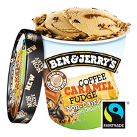 Ben & Jerry's Non-Dairy Ice Cream - Coffee Caramel Fudge